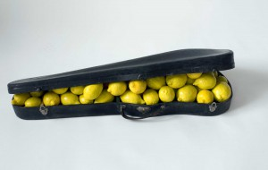 image lemon case