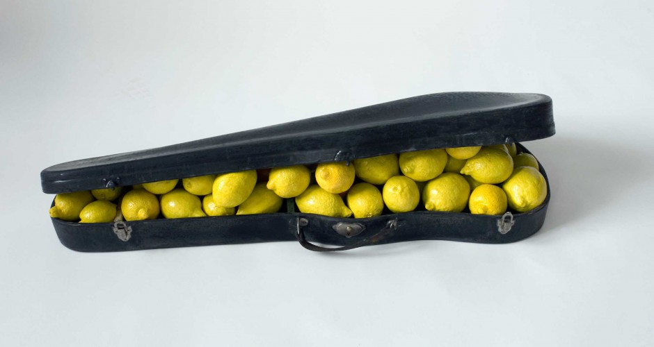 image lemon case